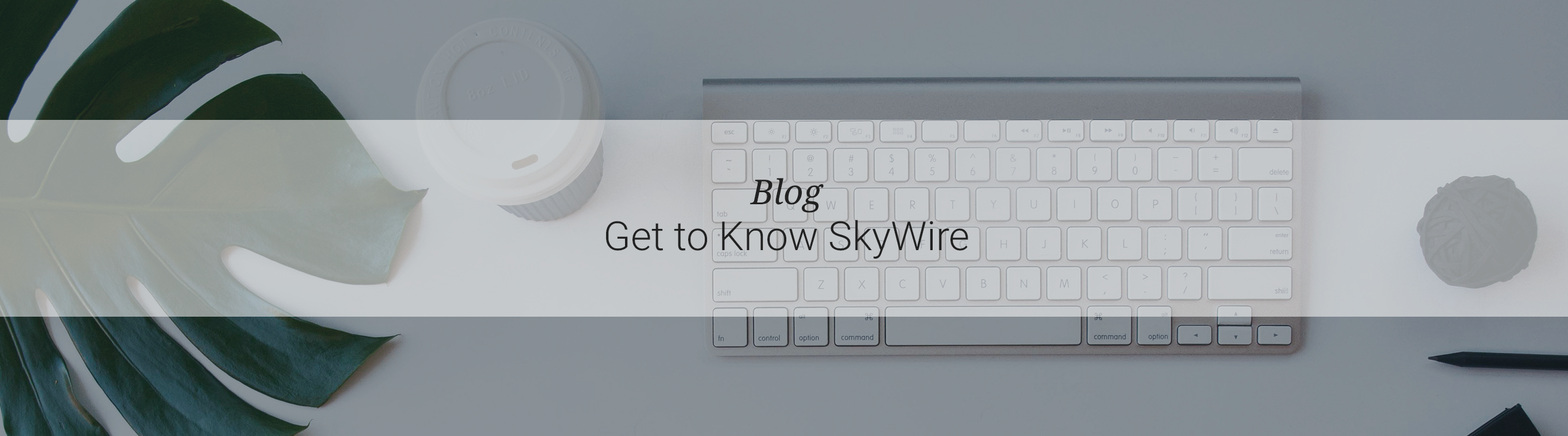 Get to Know SkyWire